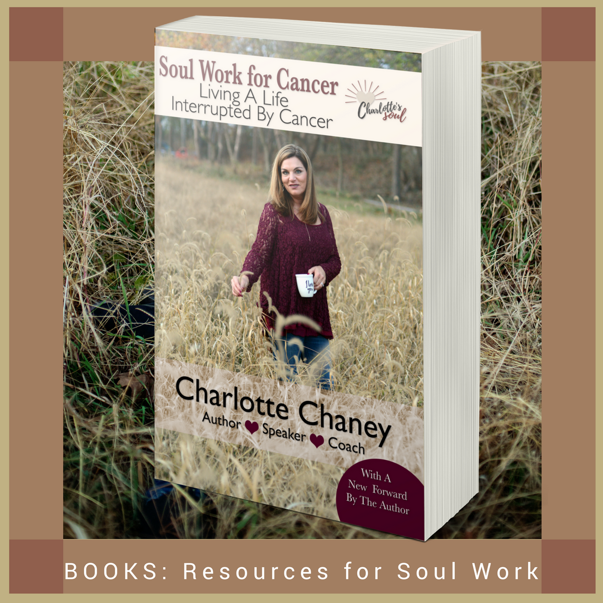 Soul Work for Cancer: Living A Life Interrupted By Cancer