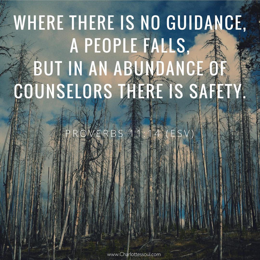 Proverbs 11:14 (ESV)