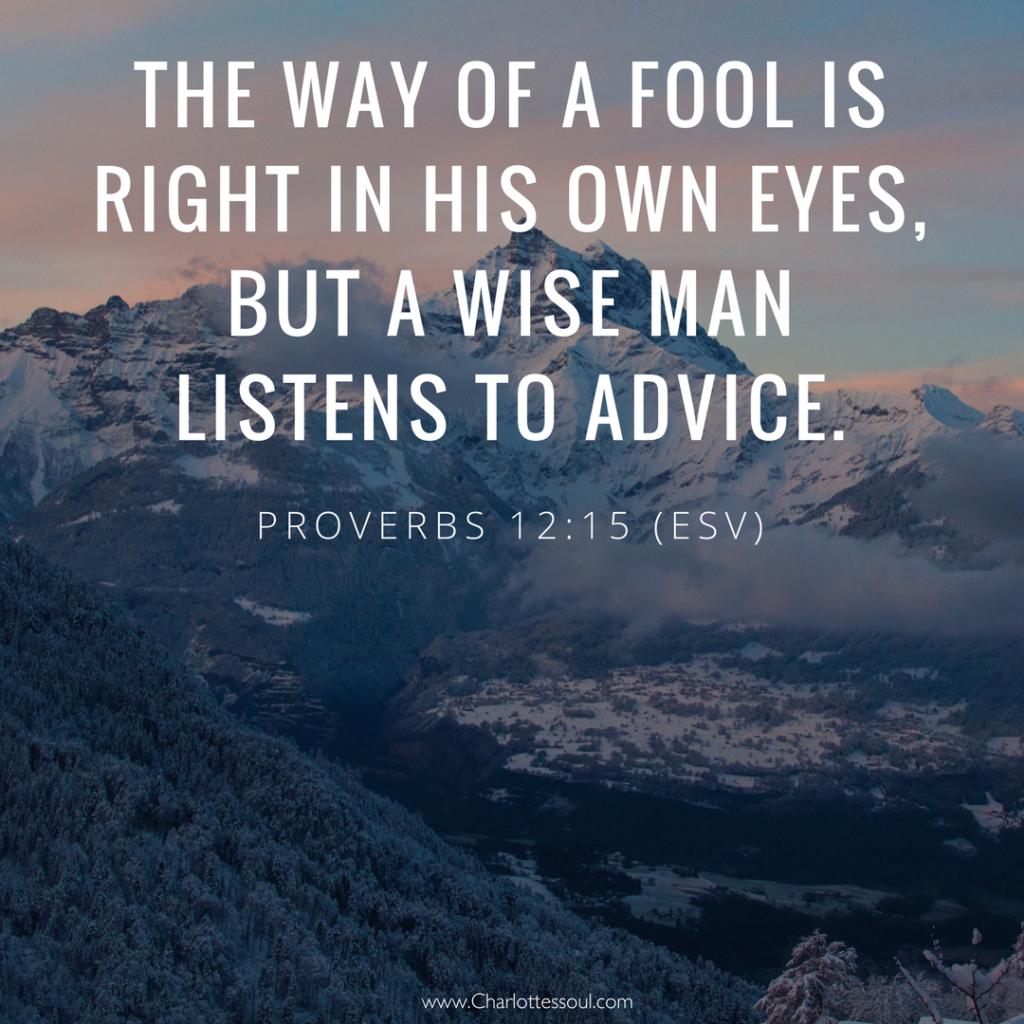 Proverbs 12:15 (ESV)