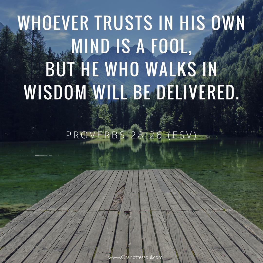 Proverbs 28:26 (ESV)