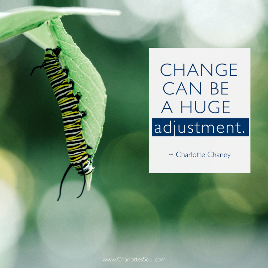 Change can be a huge adjustment. ~ Charlotte Chaney